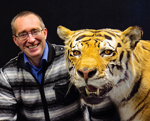 Mikhail Paltsyn poses with a taxidermied Amur tiger, the subspecies his research team hopes can repopulate Central Asia.